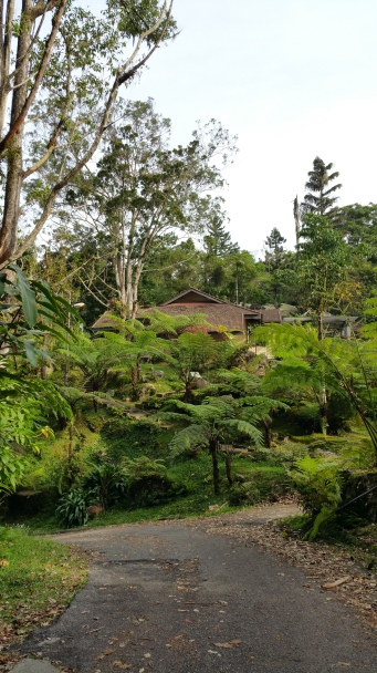 Gunung hijau rest house at Bukit Larut